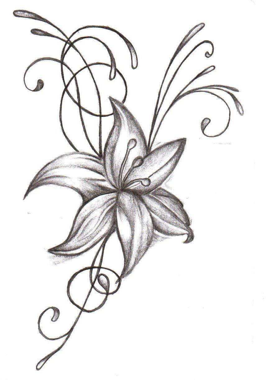 856x1221 Pencil Drawings In Hd Simple Design Neu Simple Pencil Drawing
