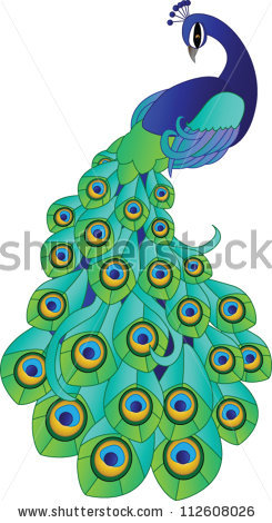 245x470 Peacock Clipart Tree Drawing