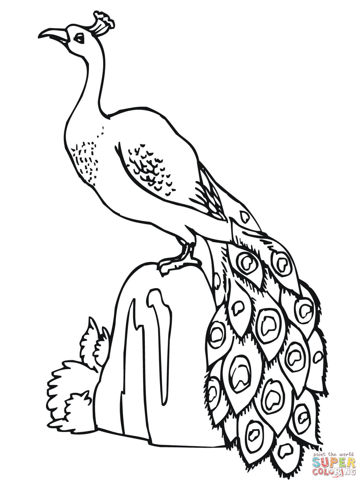 1200x1600 Peacocks Coloring Pages Free Coloring Pages
