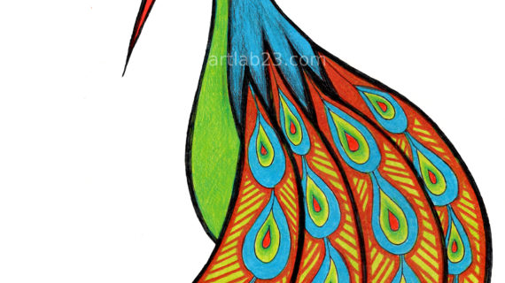 570x320 A Drawing Of A Peacock A Swirly Peacock Coloring, Search