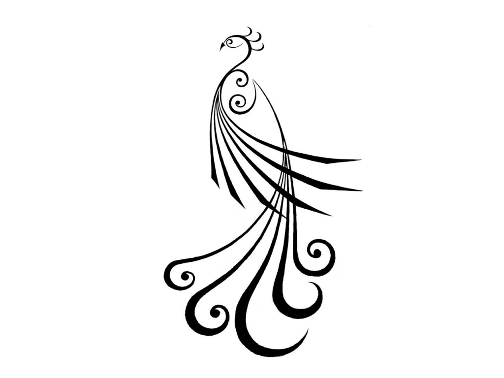 1024x768 Simple Peacock Drawing Simple Peacock Sketch Clipart Best