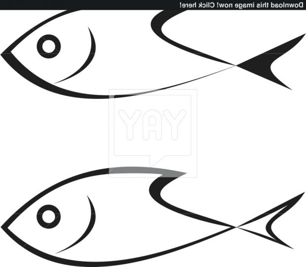 618x540 Simple Drawing Of Fish All New How To Draw Food A 25 Fascinating