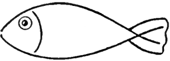 340x123 How To Draw Fish In Easy To Follow Steps Drawing Lesson