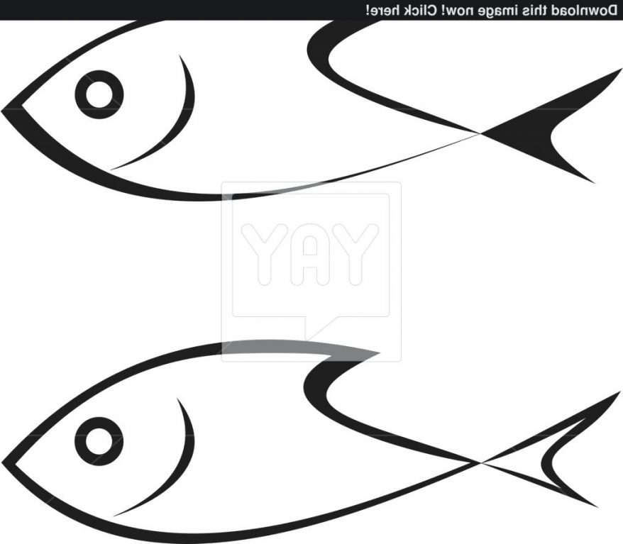 878x767 Coloring Fascinating Fish Outline Drawing. Fish Drawing Template