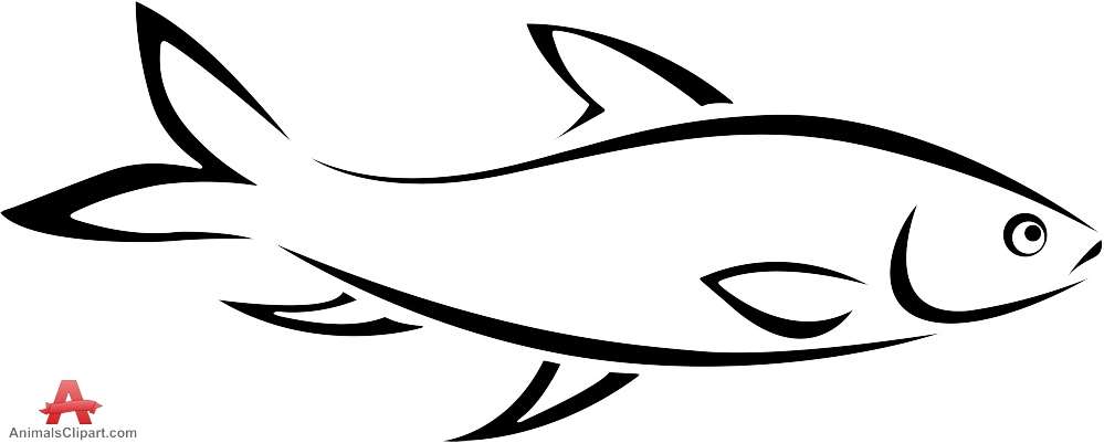 999x401 Fish Outline Clipart