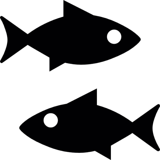 626x626 Fish Silhouette Vectors, Photos And Psd Files Free Download