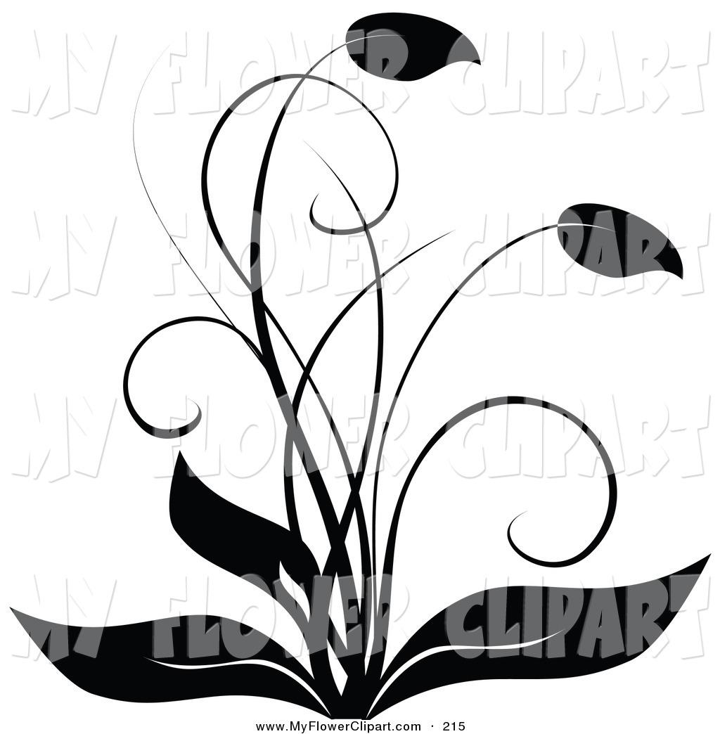 1024x1044 White Flower Clipart Leaves