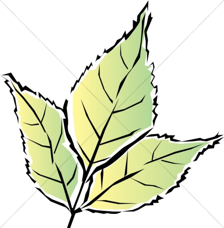 762x776 Simple Leaves Blowing In Wind Leaf Clipart