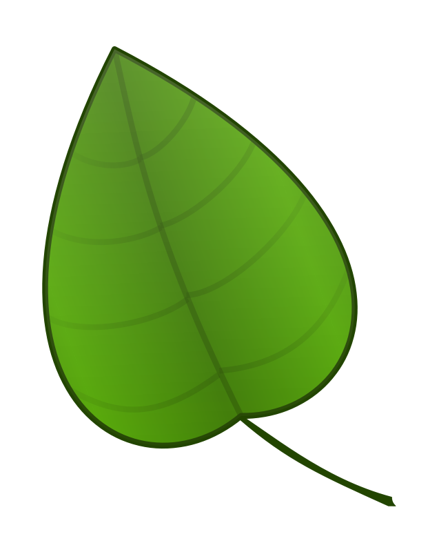 637x800 Free Simple Green Leaf Clip Art