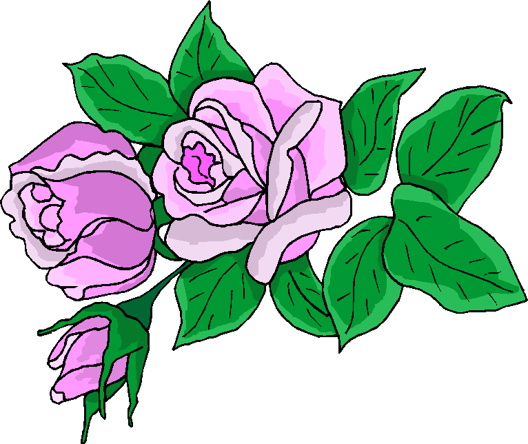 766x644 Purple Rose Clipart Simple Flower
