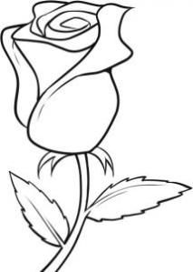 213x299 Drawn Rose Easy