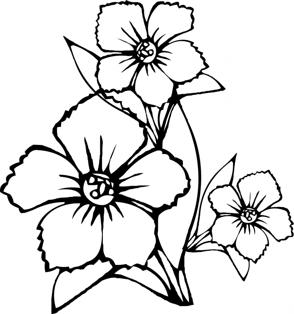 958x1024 Flowers Drawings In Pencil For Kids Simple Rose Drawings In Pencil