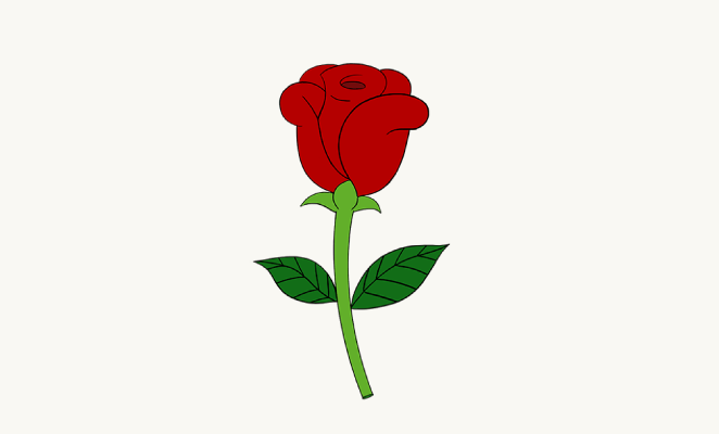 662x400 How To Draw A Simple Rose Easy Drawing Guides
