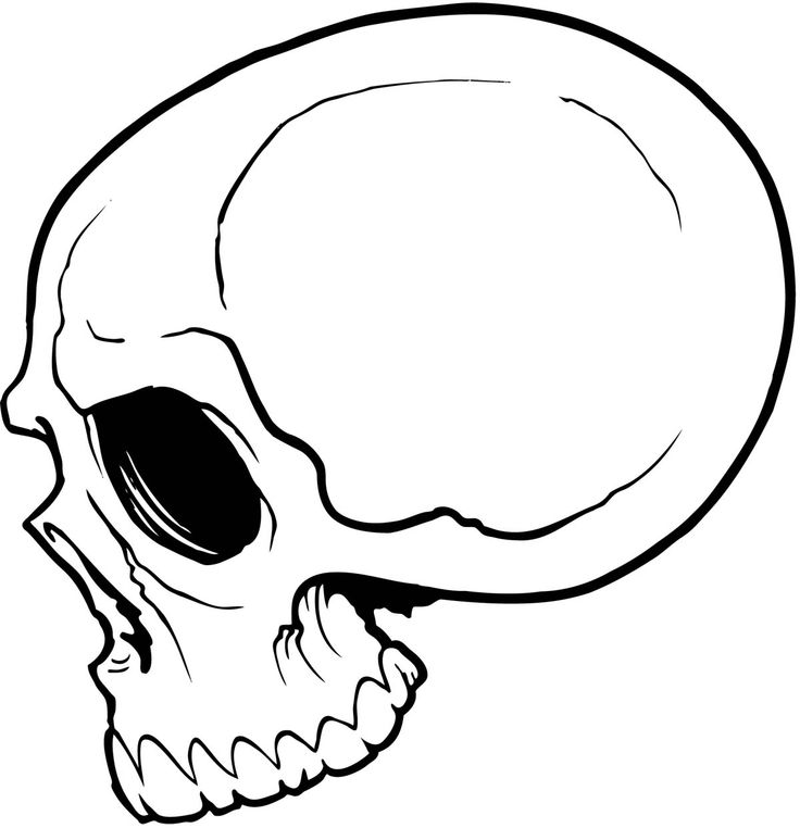 736x762 Best Simple Skull Drawing Ideas Skull Drawings