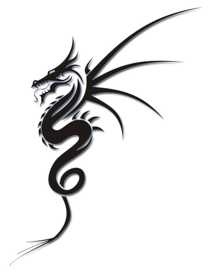 736x961 Best Tribal Dragon Tattoos Ideas Dragon Tattoo