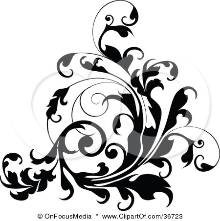 450x453 82 Best Art Curls Flourishes Amp Swirls Images Draw