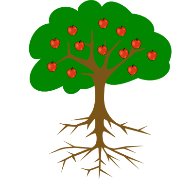 395x371 Image Result For Simple Tree Drawing With Roots And Fruit