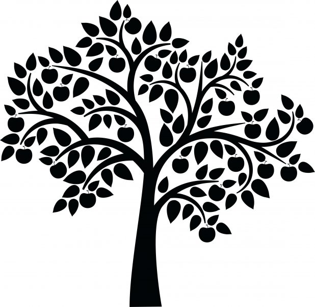 618x604 Outline Of A Tree Library Simple Clip Art Bare Family Simple Xmas