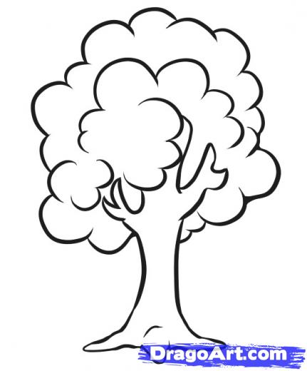 431x520 How To Draw A Simple Tree Art Drawings, Teaching