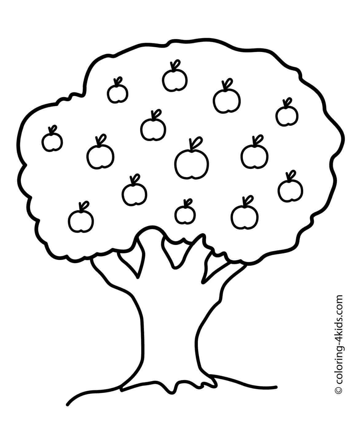 1172x1406 Simple Apple Tree Drawings