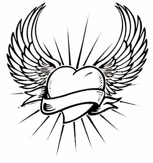 Simple Wing Drawings