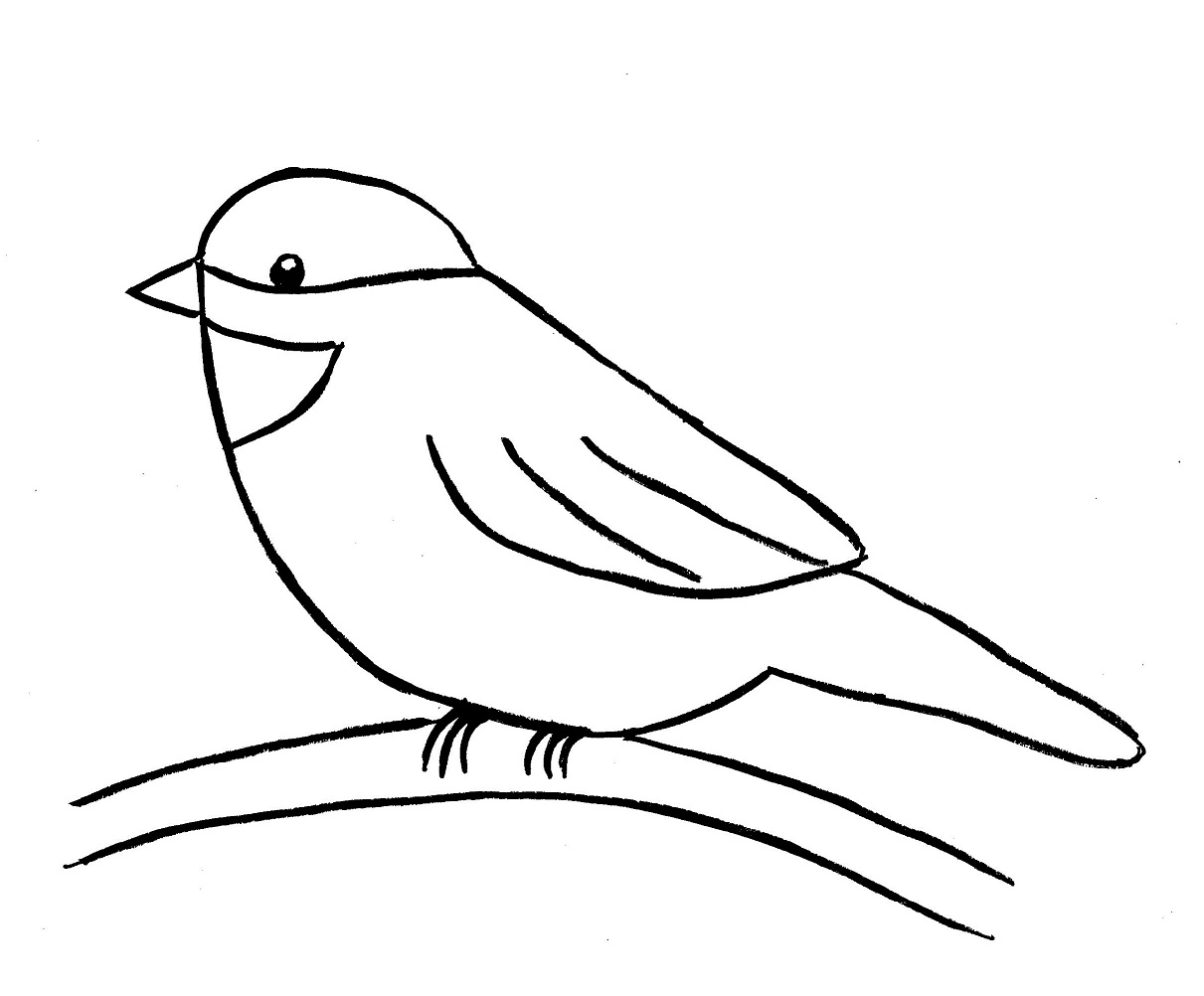 1211x1002 Chickadee Drawing Step By Step