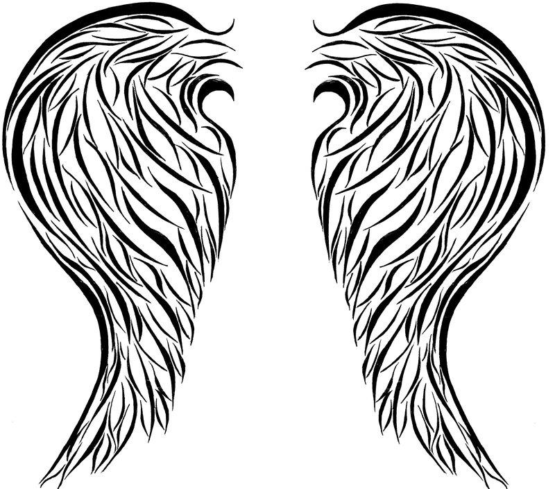 800x705 Drawn Wings Basic