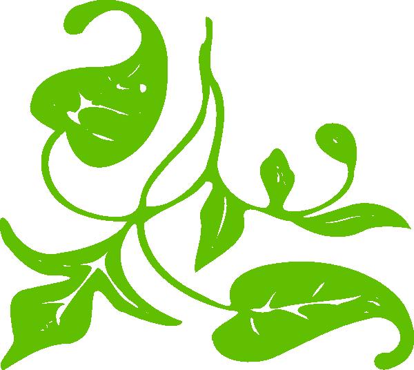 600x536 Moldura Folhas Single Leaf Clip Art