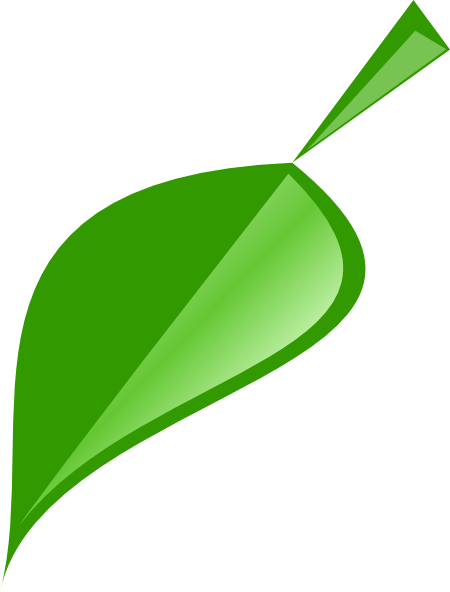 450x592 Single Leaf Clipart