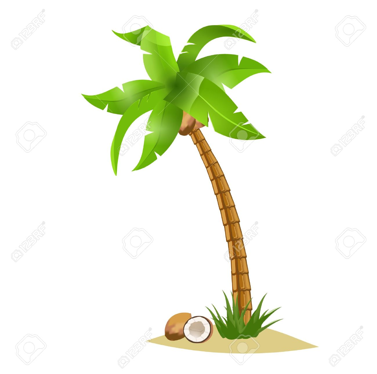 1300x1293 Coconut Clipart Single Green