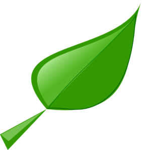 282x298 Leaf Clip Art