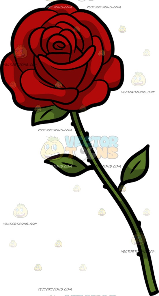 551x1024 A Single Rose Cartoon Clipart