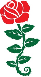 159x300 Red Rose Clipart