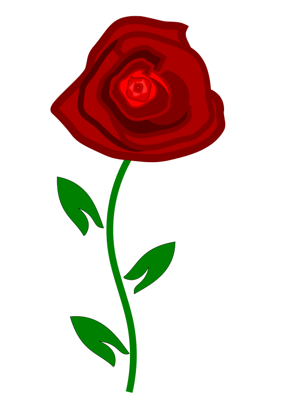 566x800 Red Rose Clipart