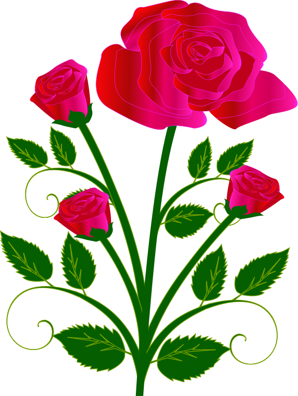 601x800 Single Pink Rose Clip Art Free Clipart Images