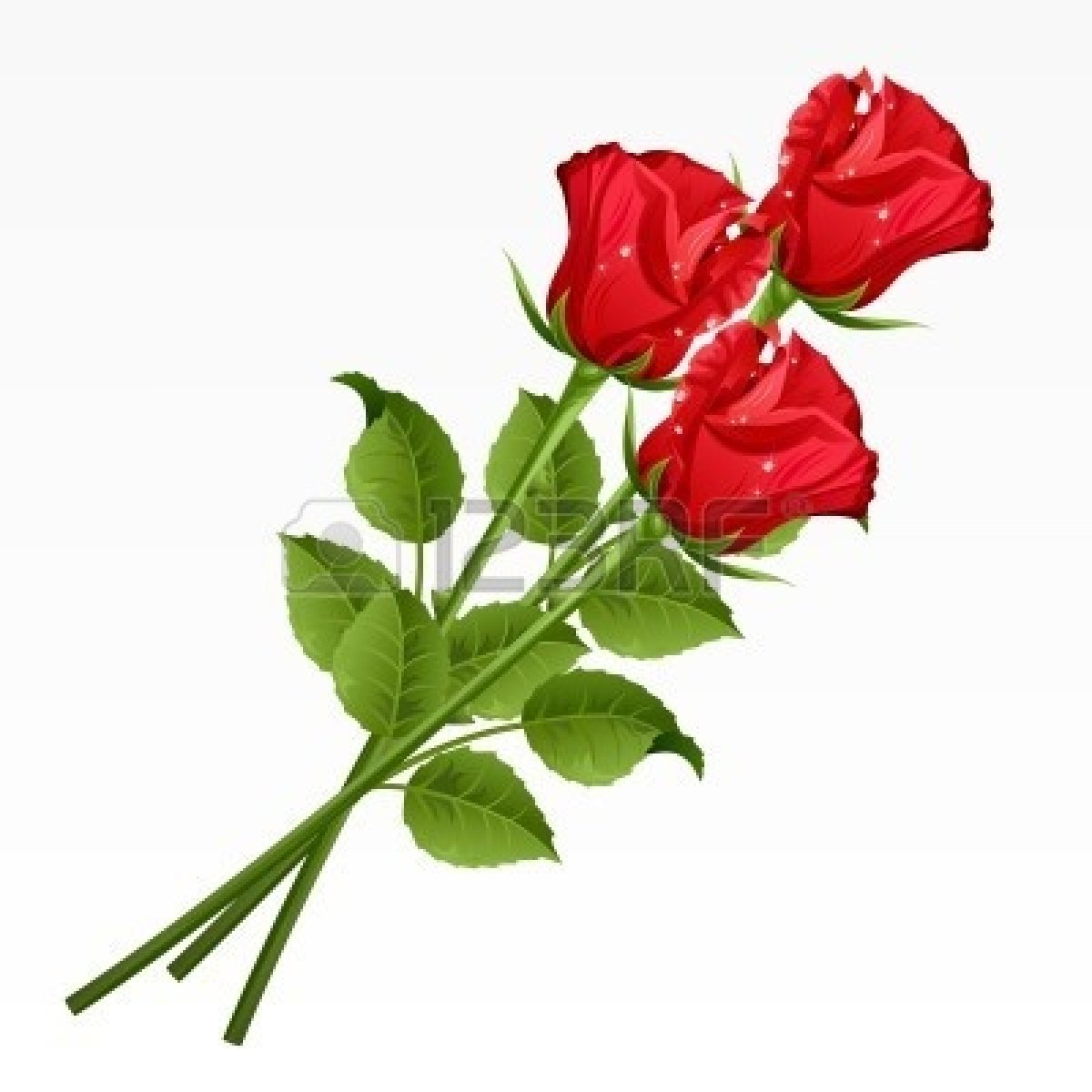 1200x1200 Long Stem Red Rose Clipart
