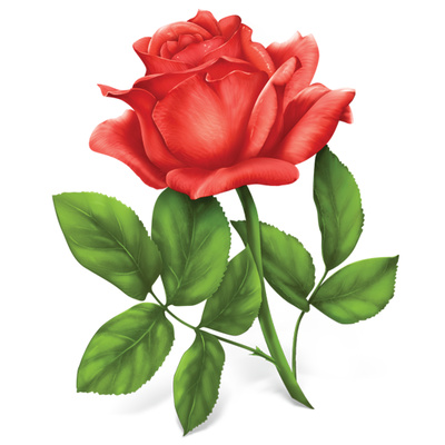 400x400 Rose Illustration, Single Red Rose Clipart Just Free Image