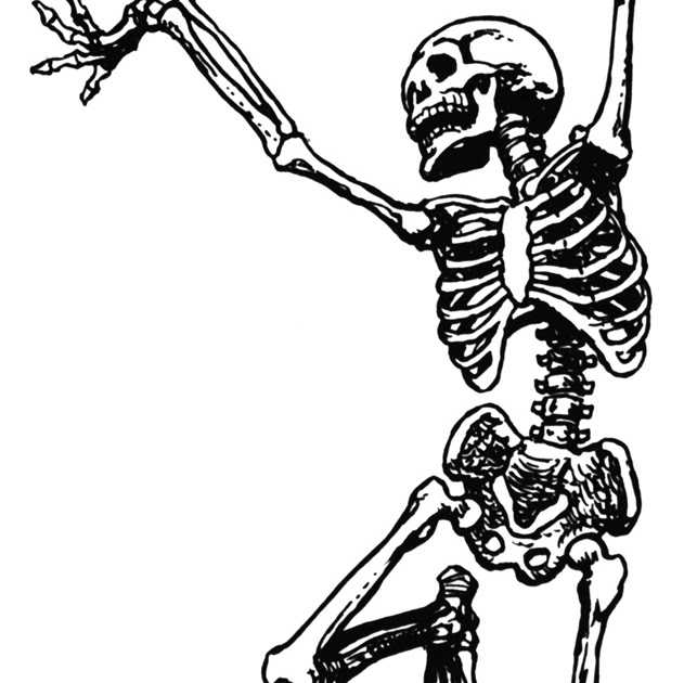 631x630 Dancing Skeletons Clip Art