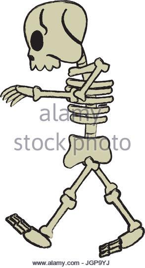293x540 Skeleton Vectors Stock Photos Amp Skeleton Vectors Stock Images