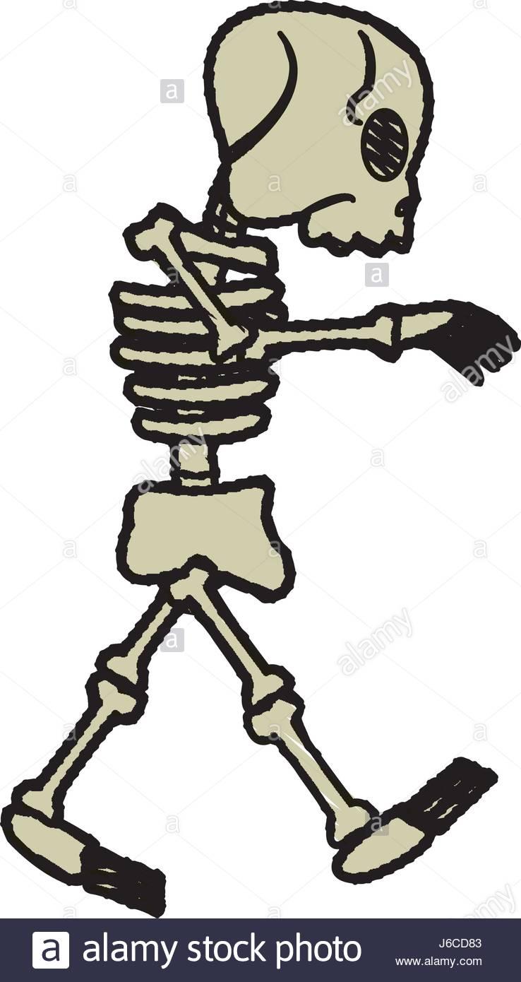 738x1390 Halloween Skeleton Cartoon Stock Photos Amp Halloween Skeleton