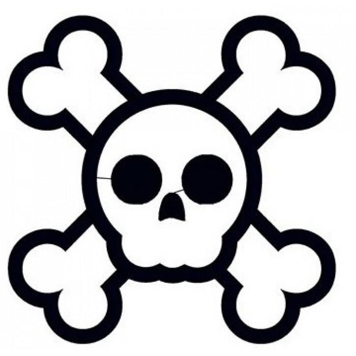 700x700 Skull And Bones Applique