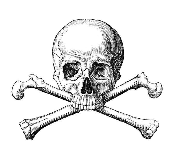 Skull And Crossbones Picture