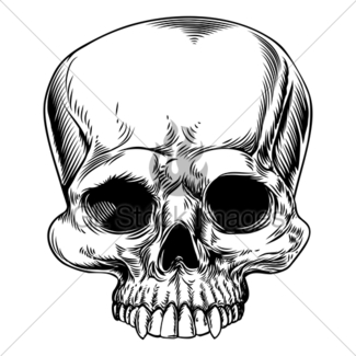 325x325 Skull Drawing Gl Stock Images