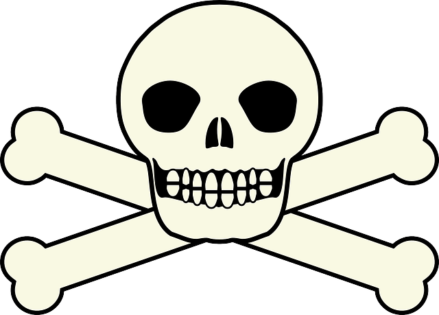 640x459 Free Pictures Skull