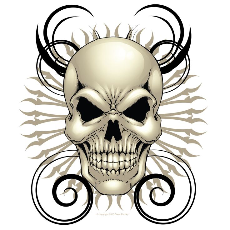 Skull Pictures Art