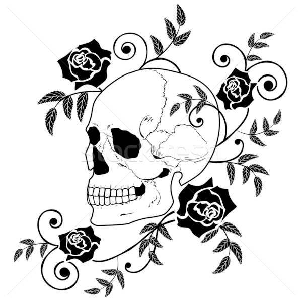 600x600 Skulls Stock Photos, Stock Images And Vectors Stockfresh