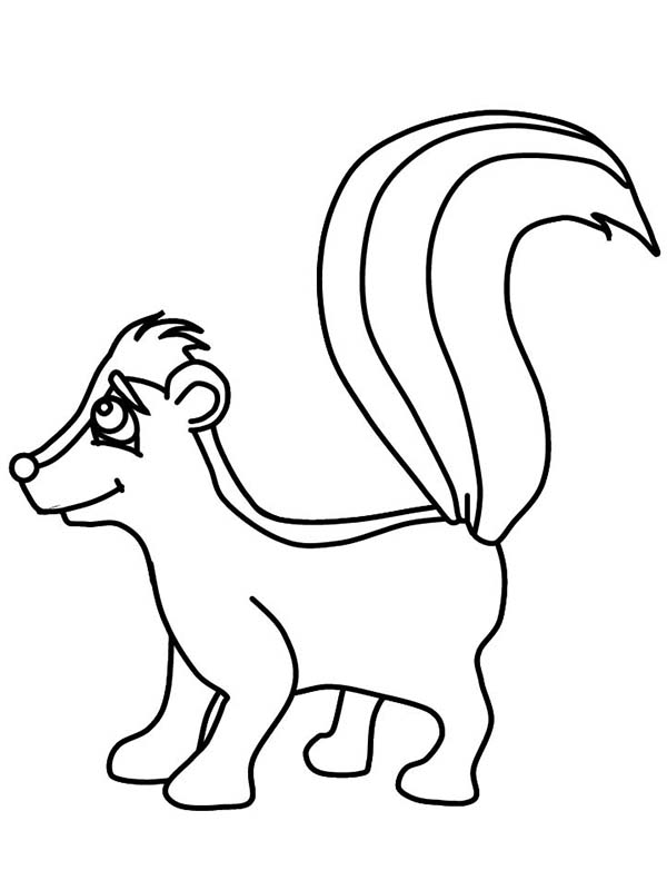 Skunk clipart free download best skunk clipart on for Coloring page of a skunk