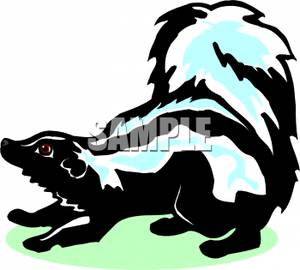 300x270 Colorful Cartoon Of A Skunk Hunkering Down