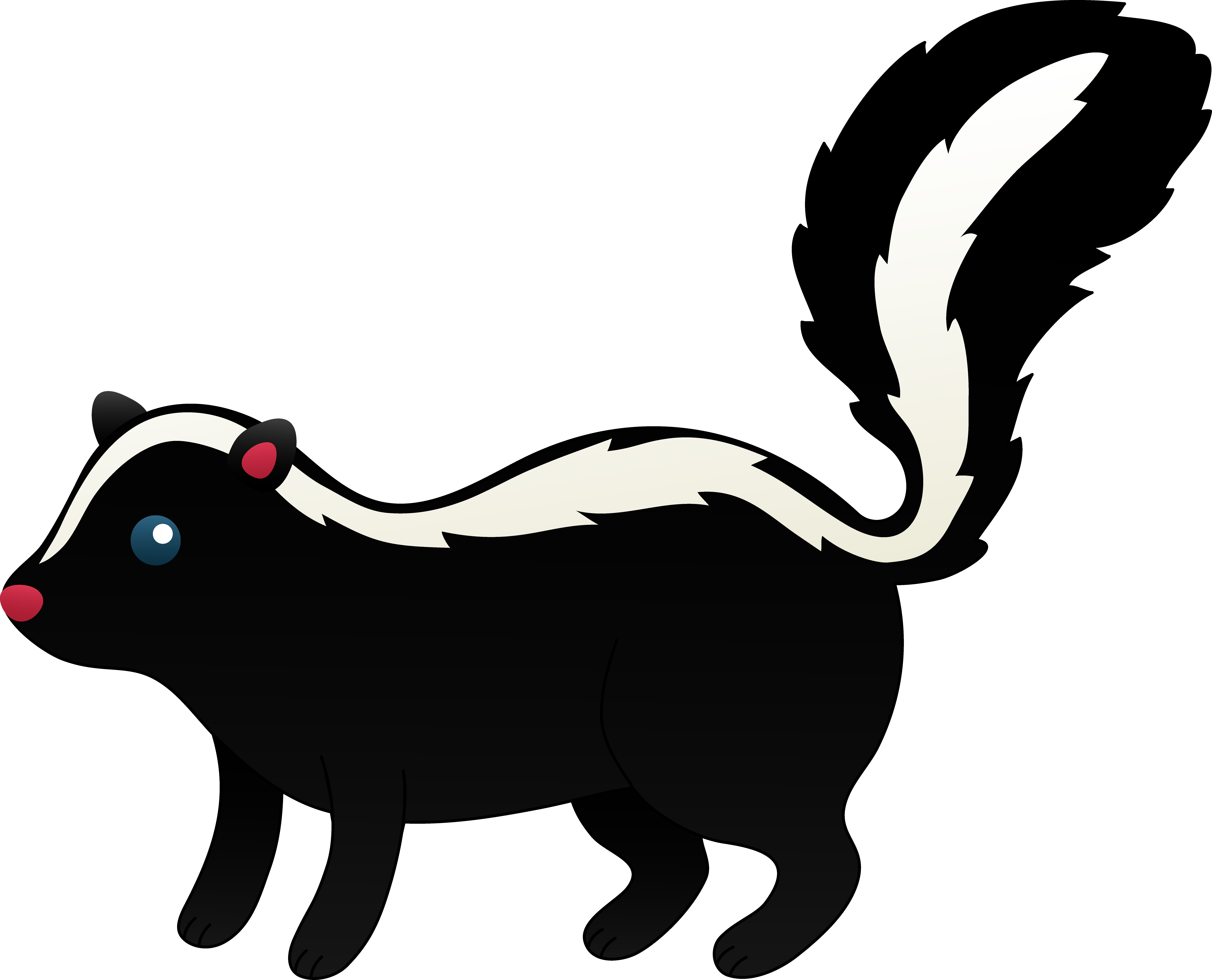 8713x7042 Little Black And White Skunk