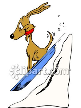 263x350 Dog Sledding Downhill